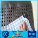 Scheda impermeabile di drenaggio della fossetta della fossetta Board/HDPE