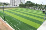 sport d'herbe de 50mm, herbe artificielle pour le football (Y50-P)