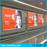 Рекламировать напольную освещенную контржурным светом СИД коробку ткани светлую