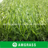 Leisure Landscape GrassのためのPE Artificial Grass