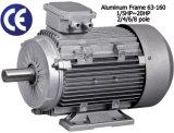 Motore elettrico di alluminio del blocco per grafici 1.5kw-4 Palo