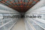Automatischer Geflügelfarm-Geräten-Rahmen-Rahmen für Schicht-Bratrost-Hünchen