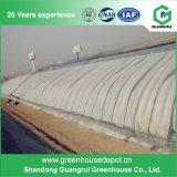 Bestes verkaufendes Gemüsegewächshäuser verwendetes Plastik-Film grünes Haus