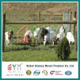 電流を通された鉄のワイヤーによって編まれる網の馬の牛農場の塀
