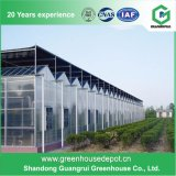 Schlag-Preis-Polycarbonat-Blatt-grünes Haus PC Gewächshaus