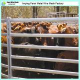ヒツジのPanles電流を通された/Calfの牛Panle