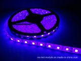 5050 유연한 Waterproof 60PCS/M RGB LED Strip