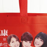 3D Non-Woven Advertizing Bag con Customised Design (MY-049)