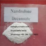 Culturismo Hormonas Esteroides polvo nandrolona Decadurabolin