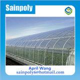 高品質のHydroponicのための卸し売りプラスチックフィルムのマルチスパンの温室