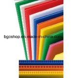 Feuilles ondulées colorées de pp (feuille creuse/feuille de correx)
