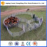 Panneau galvanisé plongé chaud lourd de bétail de panneau de yard de bétail