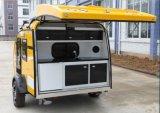 12/24V Koelkast van de Kampeerauto van de Auto van gelijkstroom de Mini Diepvries