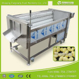 (MSTP-1000) Моющее машинаа шелушения картошки сразу изготовления Vegetable