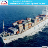 Transporte Agent Shanghai a Melbourne China por Sea, FCL, LCL