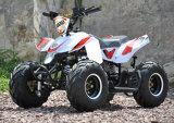 El EEC EPA se divierte a cabritos 49cc ATV
