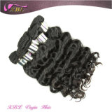 두 배 Weft Soft 및 Strong Raw 인도 Natural Hair Extensions