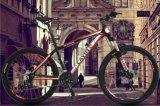 26 Bike горы скорости дюйма 27 с вспомогательным оборудованием хорошего качества