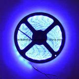 エポキシ5050のLEDの滑走路端燈を防水しなさい