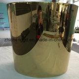 Plaque d'acier inoxydable métallisant la machine