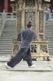 Tai Kleding van de Mensen van Kongfu van de Chi de Zwarte Hoogwaardige lang-Sleeved