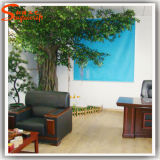 Artificial verde Ficus Tree Made de Fiber Glass