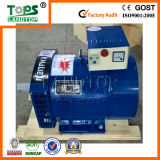 LANDTOP 삼상 Dynamo 또는 Alternator/Generator