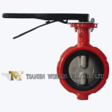 Seat doux Wafe Type Butterfly Valve avec Nylon Painting Disc (D371X-10/16)