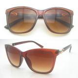 حادّة يبيع إطار [بلستيك&تر90] نظّارات شمس