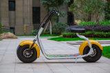 motorino elettrico di mobilità della motocicletta delle grandi rotelle di formato 2 di Alto-Collocazione 60V