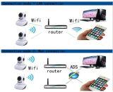 플러그 앤 플레이 구름 기록을%s 메모리 카드를 가진 지능적인 WiFi 무선 PTZ 사진기