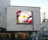 Muestra al aire libre de la visualización de LED de P6 RGB