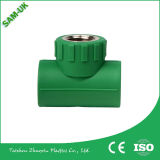 Vente en gros Plastic Union PPR Fittings Green PPR Plastic Pipe 90 Deg Elbow