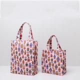 Dos tallas pican los bolsos del encierro de la cremallera de los bolsos de compras del modelo de la robusteza (CK003-6)