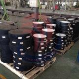 Cojines del neopreno de China Dacheng vendidos a Italia