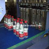 Linear-Dos Empujar PE Film máquina de embalaje (WD-350B)