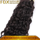 方法ブラジルのHuman Hair、Cheaper Price Water Wave Hiar Weave、100%Human Hair (FDX-SM-2016-5)