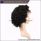 Парик шнурка Glueless красивейшей скручиваемости Afro Kinky полный с естественным волосяным покровом