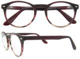 Marcos populares de las lentes de los marcos ópticos de Eyewear de la manera