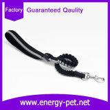 Terminal de componente de nylon del perro de la calidad del correo por encargo con estilo estupendo del perro