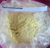 Acetato steroide Burning grasso Trenbolone Enanthate di Tren