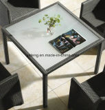 Silla y vector baratos de jardín de los muebles del hotel del precio del diseño popular fijados (YTD020-1)