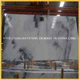 Nuevo mármol blanco Polished natural para las encimeras y los azulejos de suelo
