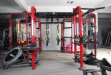 Kostspielig Übungs-Gerät Crossfit Karosserien-Gebäude-Gerät (BFT-3601)