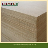 Sale caldo Beech Commercial Plywood per Furniture Manufacturer