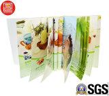 Профессиональные книжное производство/печатание каталога/печатание брошюры в Китае