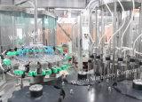De volledige Automatische Lijn van het Flessenvullen van het Glas van de Alcoholische drank van de Wijn