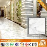Carrara 최고 백색 대리석 마루 사기그릇 도와 (JM88067D)