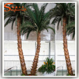 Fabricant professionnel en fibre de verre artificielle Palm Tree