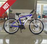 Panier de bicyclette voyageant le vélo électrique de bicyclette pliable